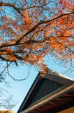 老房子在盆景村庄,大宫,埼玉,日本 免版税图库摄影