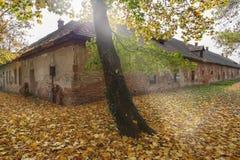 老房子在秋天的公园 库存图片