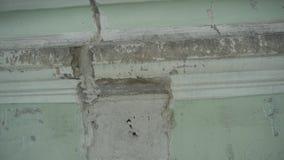 老房子好的垂直的全景有门面、窗口和屋顶上面的 股票视频
