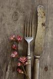 老扁平的餐具 免版税图库摄影