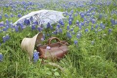 老手提箱、帽子和遮阳伞在矢车菊的领域 库存照片