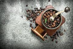 老手研磨机用咖啡豆 库存照片