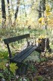 老打破的长凳在秋天公园 免版税库存照片