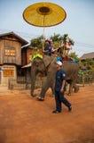 老挝人大象节日, Hongsa,老挝 免版税库存图片