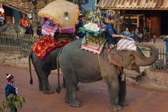 老挝人大象节日, Hongsa,老挝 免版税库存照片