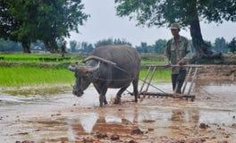 老挝人的生活 库存图片