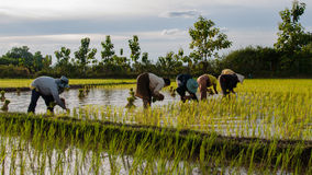 老挝人的生活 免版税库存照片