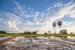老挝人的生活 免版税库存图片