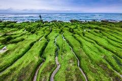 老挝人阿梅绿色岩石低谷在新的台北 免版税图库摄影