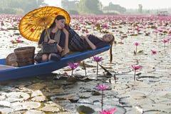 老挝妇女在花莲花湖,佩带传统泰国人,红色莲花海UdonThani泰国的妇女 库存照片