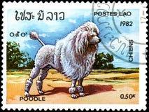 老挝-大约1982年:邮票,打印在老挝,显示一只狮子狗 免版税库存图片