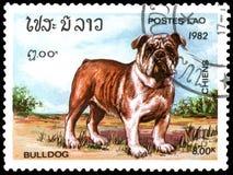 老挝-大约1982年:邮票,打印在老挝,显示英国牛头犬狗 免版税库存照片