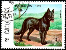 老挝-大约1986年:邮票,打印在老挝,显示Bernese 图库摄影