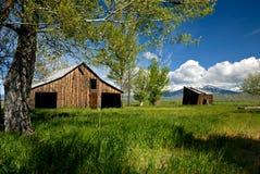 老放弃农场在爱达荷 库存图片