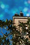 老教会的塔有十字架和鹳巢的 免版税图库摄影