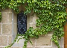 老教会视窗详细资料2 免版税库存图片