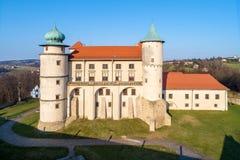 老新生城堡在Wisnicz,波兰 免版税库存照片