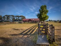 老新西兰大农场 免版税库存照片