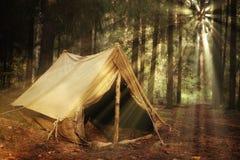 老旅游帐篷在森林里 免版税库存照片