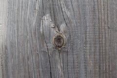 老日志木头纹理摘要,作为背景的日志木树桩或墙纸,木树桩样式,老日志木头裂缝  库存照片