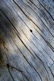 老日志的纹理 木纹理 图库摄影