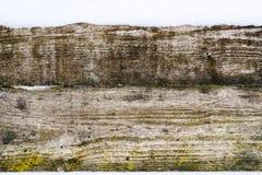 老有雪的葡萄酒木墙壁 冬天和圣诞节背景 图库摄影