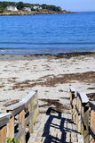 老木下来走道主导的海滩行人对镇静海洋水 免版税库存图片