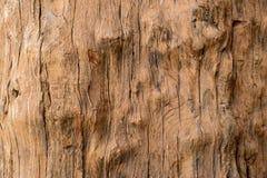 老木头有毛面背景 库存图片