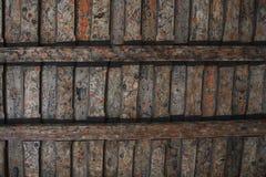 老木头被绘的天花板 图库摄影