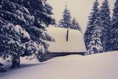 老木客舱,盖用雪 免版税库存图片