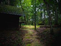 老木小屋在剧烈的样式的雨林里 免版税库存图片