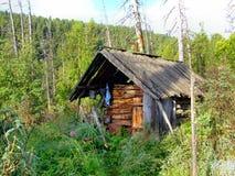 老木小屋猎人。西伯利亚。 免版税库存图片