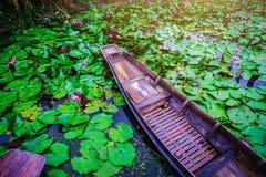 老木小船和红色莲花在泰国,小船在t漂浮 免版税库存图片