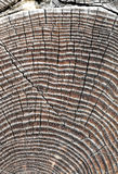 老木房子墙壁的片段  免版税图库摄影