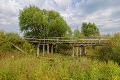 老木打破的桥梁 图库摄影