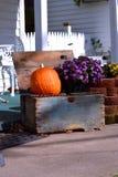 老木板箱用南瓜和花 图库摄影