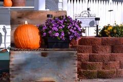 老木板箱用南瓜和花 免版税库存图片