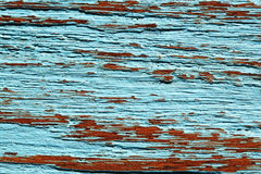 老木柚木树蓝色背景纹理墙纸 库存图片