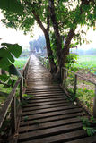 老木桥 免版税库存照片