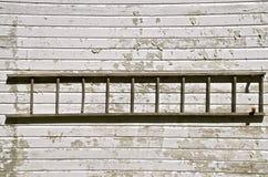 老木梯子h在白色棚子墙壁上垂悬 库存图片