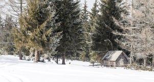 老木棚子在冬天 免版税库存图片