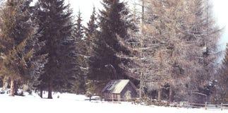 老木棚子在冬天 库存图片