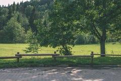 老木篱芭在美丽的公园在秋天-葡萄酒老神色 库存照片