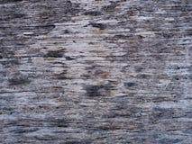 老木纹理背景获取 免版税库存图片