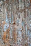 老木纹理崩裂了与被剥皮的蓝色tourquoise油漆 免版税图库摄影