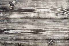 老木背景或纹理 库存照片
