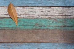 老木背景白色被绘的蓝绿色 图库摄影