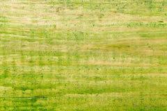 老木表面绘与绿色油漆 免版税库存照片