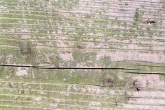 老木表面绘与绿色油漆 免版税库存图片