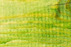 老木表面绘与绿色油漆 图库摄影